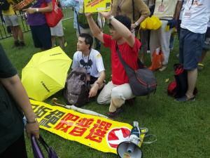 """Banner: """"The Citizens Against Pseudo-Universal Suffrage,"""" on the march of the same name, June 14, 2015. HRIC photo."""