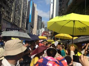 Protesters at the democracy march organized by Civil Human Rights Front, Hong Kong, July 1, 2015. HRIC photo.